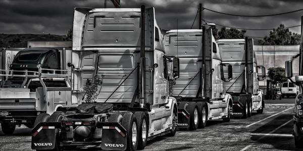 Lexmar trucks